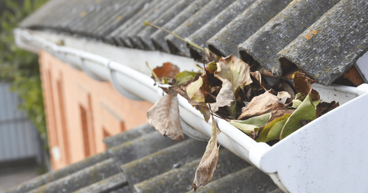 How To Get Your Gutters Ready For The Upcoming Spring Season