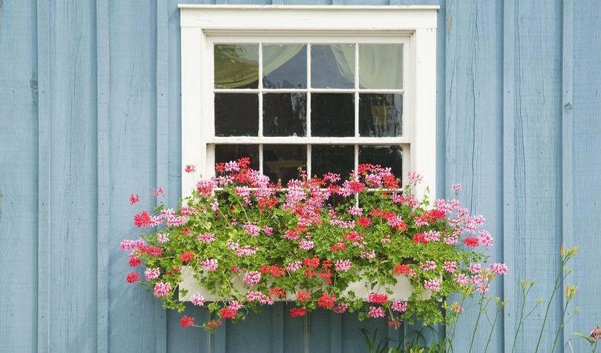 hanging-window-arrangement