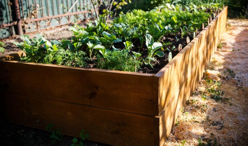 raised-bed-gardening-designs