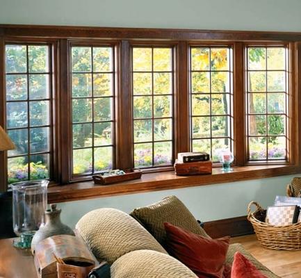 Bay & Bow Windows